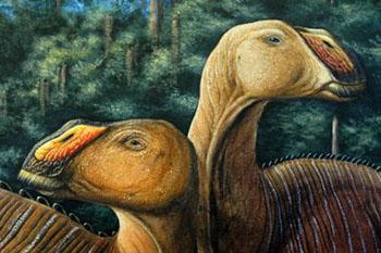 ฟอสซิลไดโนเสาร์พันธุ์ปากเป็ด