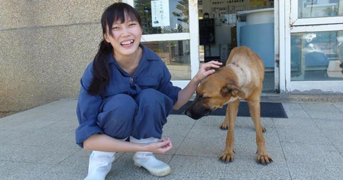 ผอ.ศูนย์พักพิงสัตว์ฆ่าตัวตาย หลังซึมเศร้าหนักเพราะจำต้องปลิดชีพสุนัขนับร้อย