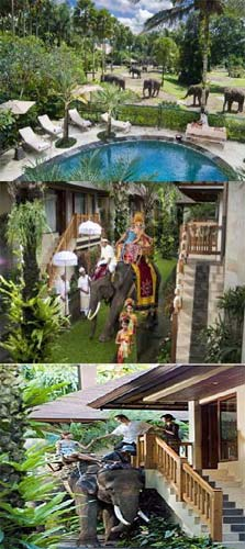 Elaphant Safari Park Lodge บาหลี ประเทศอินโดนีเซีย
