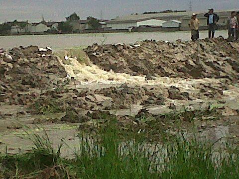 น้ำท่วมนวนคร 2554