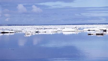 น้ำแข็งขั้วโลก