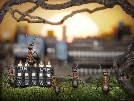 A Bug's Life02