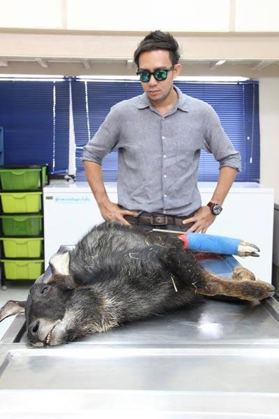 หมอล็อต ไว้อาลัย เจ้าช้าง เลียงผาถูกทำร้าย บอกคนทำมึงรีบไปตายแล้วกัน