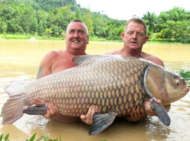 ชายอังกฤษจับปลาคาร์พยักษ์ได้ใน จ.กระบี่ คาดทุบสถิติโลก
