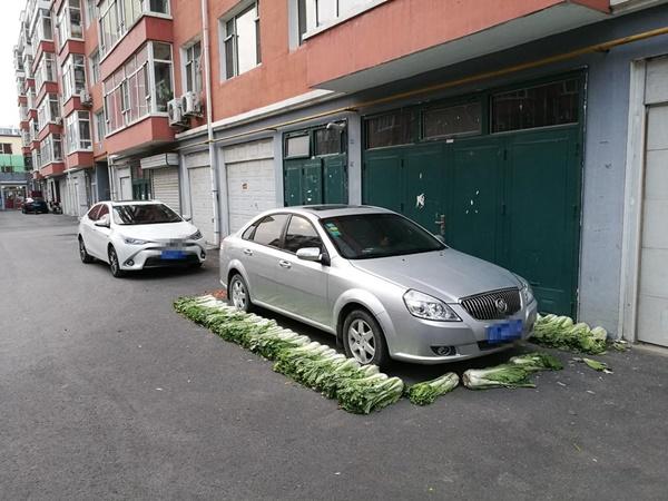 นี่มันอะไร !? วิธีสงวนที่จอดรถแบบใหม่ ใช้ผักกาดวางเรียงไว้ซะเลย