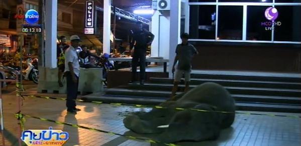 ควาญช้าง ใช้ตะขอทำร้ายนักท่องเที่ยวสงขลา