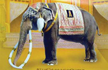 ช้างเผือก คู่พระบารมี