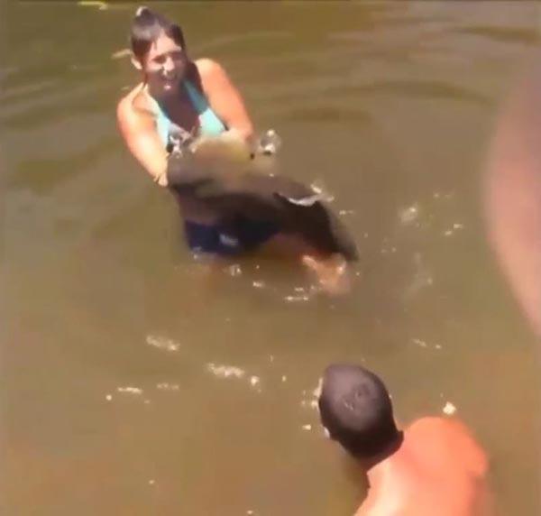 จับปลาดุกมือเปล่า