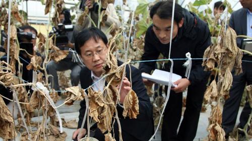 เกาหลีใต้ประกาศเขตภัยพิบัติ หลังสารเคมีรั่วไหล-เสียหายหนัก