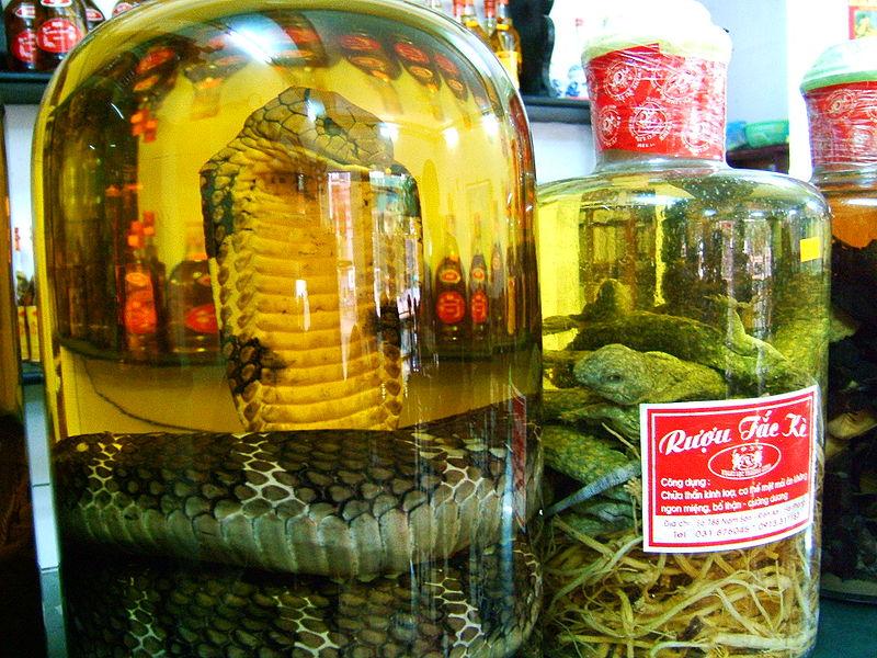 สาวจีนถูกงูในโหลดองเหล้าฉก หลังดองนาน 3 เดือน